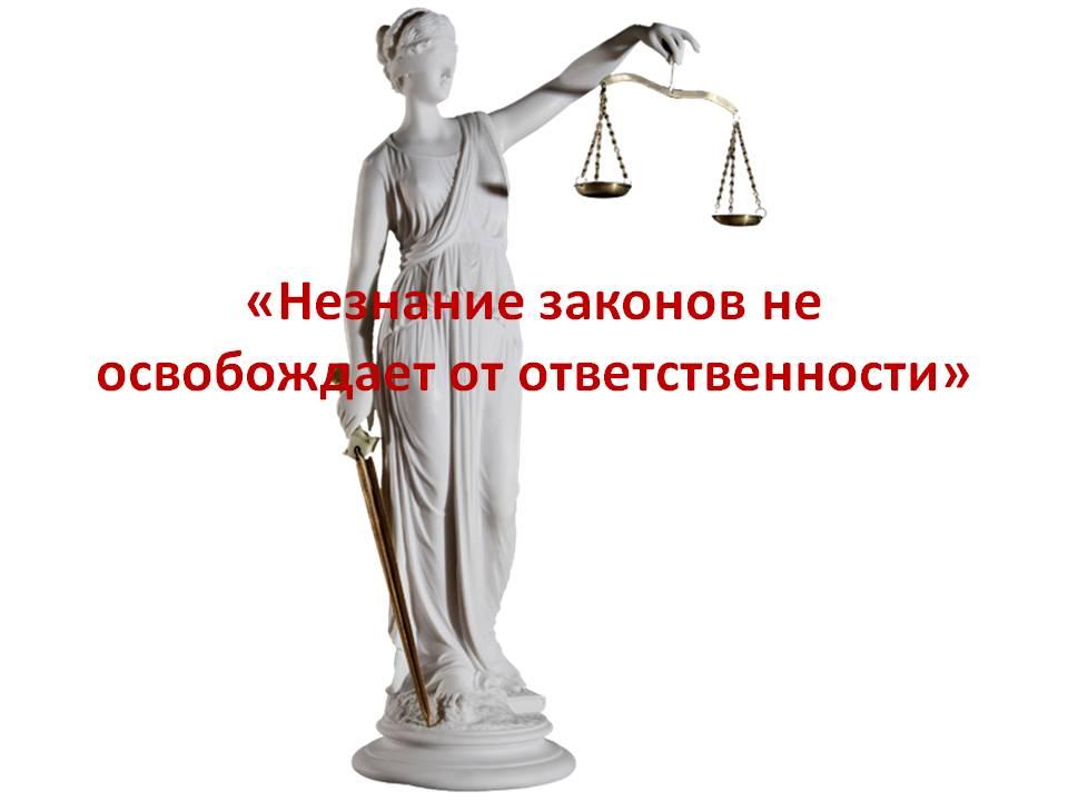 незнание законов не освобождает от ответственности